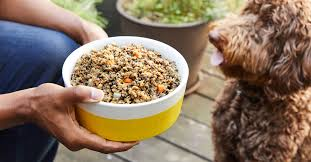 Raw Diet Dog Food Brands